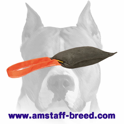 Amstaff bite tug with handle for training and playing
