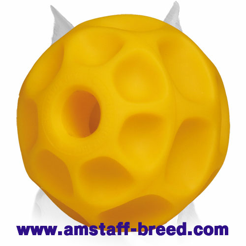Tetraflex treat dispener toy for Amstaff breed