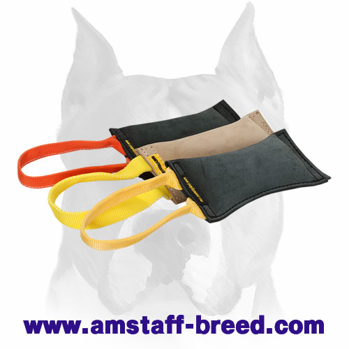 Amstaff puppy tug made of leather for bite training