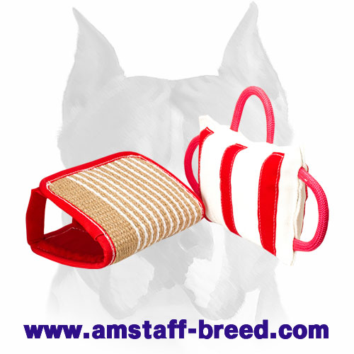 Amstaff bite pillow with 3 strong handles for efficient training