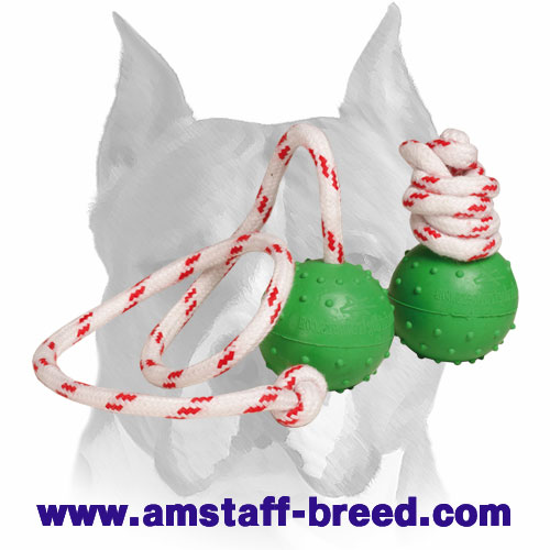 Amstaff solid rubber water-proof ball for training