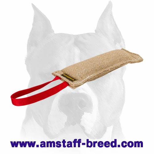 Amstaff puppy tug for bite training made of Jute
