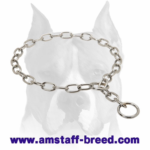 Strong Dog Collar for Amstaff