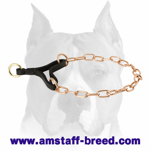 Strong Chain Dog Collar for Amstaff