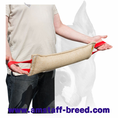 Reliable Amstaff Bite Tug Made of Jute