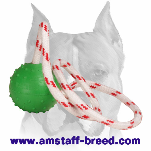 Amstaff dotted rubber ball for training