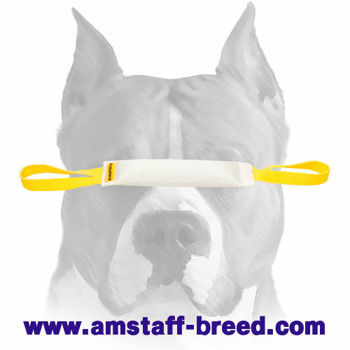 Amstaff bite tug made of durable fire hose for training puppies and young dogs