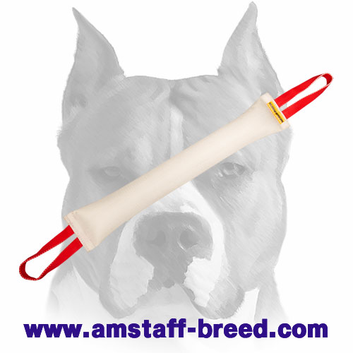 Strong bite tug with 2 handles for adult Amstaff dogs training and playing