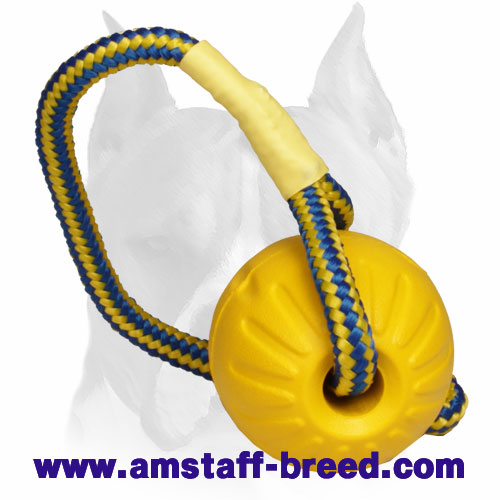Training ball made of foam with rope for Amstaff