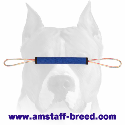 Rolled French linen puppy bite tug for training Amstaff breed