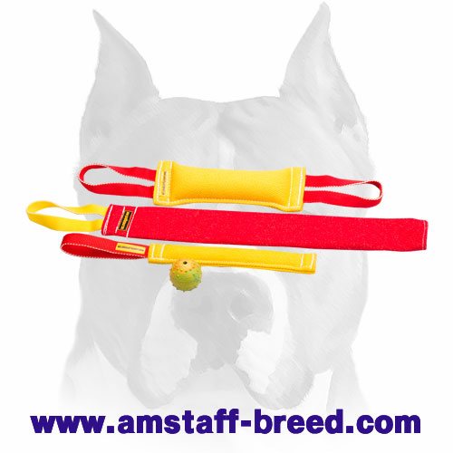 Solid set of bite tugs with handles for Amstaff training