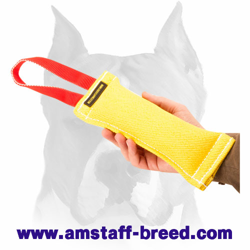 Convenient puppy bite tug for Amstaff training and playing