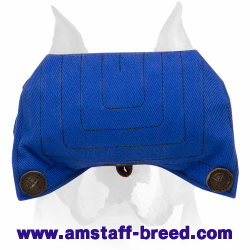 Amstaff bite builder for puppies