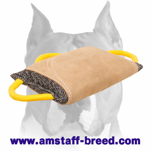 Bite pad with 3 strong handles for training Amstaff breed