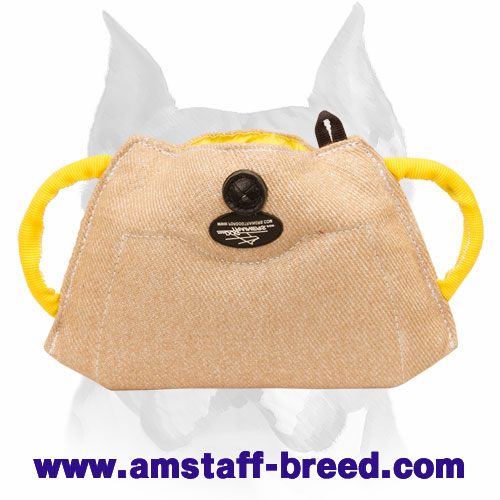 Amstaff puppy bite builder