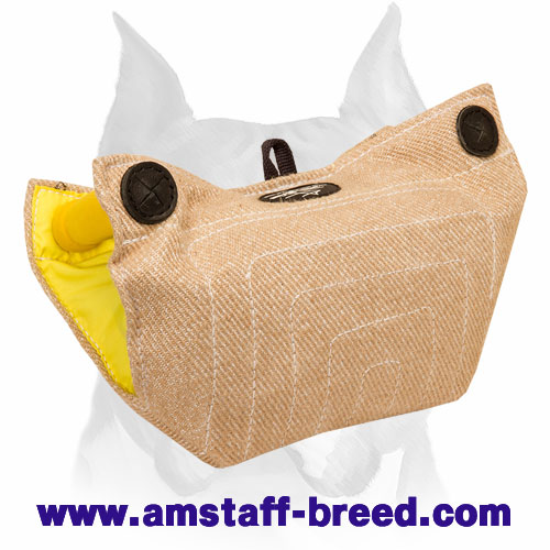 Amstaff bite builder for puppies and young dogs