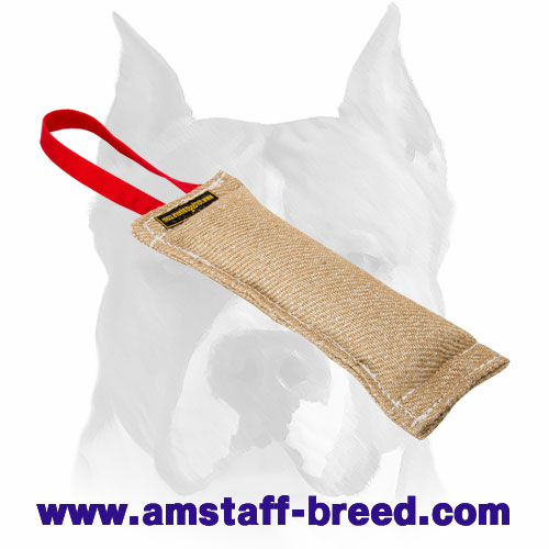 Amstaff durable puppy bite tug for training and playing
