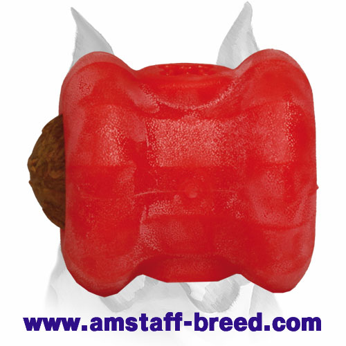 Amstaff Foam Dog Treat Dispenser