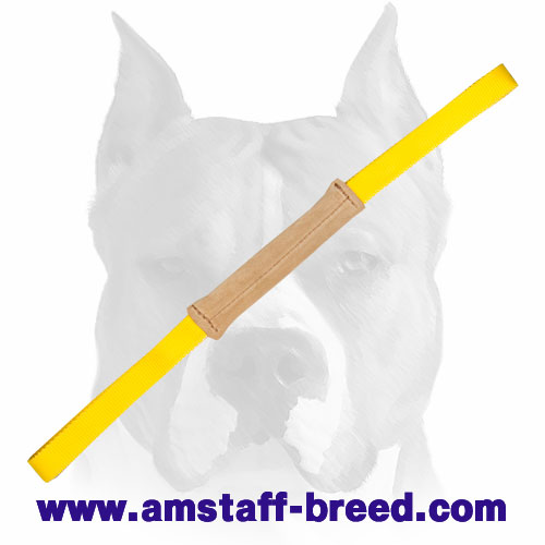 Amstaff puppy bite tug with 2 strong handles for training and playing
