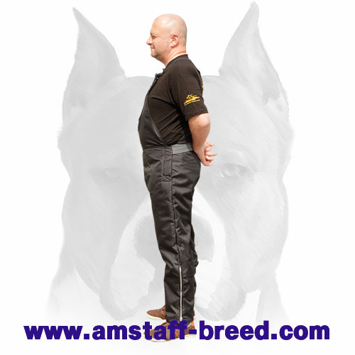 Amstaff training durable scratch pants