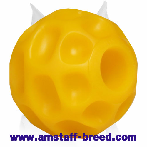 Amstaff treat dispenser ball made of tetraflex