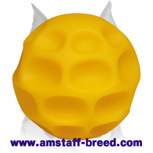 Tetraflex treat dispener toy for Amstaff