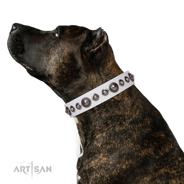 Unusual decorated genuine leather dog collar for comfortable wearing