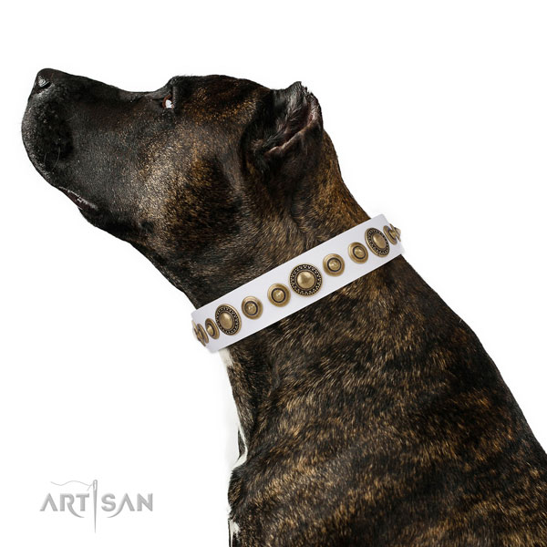 Strong buckle and D-ring on full grain leather dog collar for everyday use