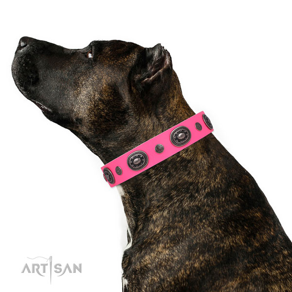 Natural leather dog collar with rust-proof buckle and D-ring for stylish walking