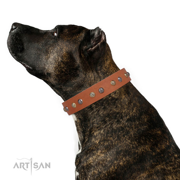 Natural leather dog collar with strong buckle and D-ring for comfortable wearing