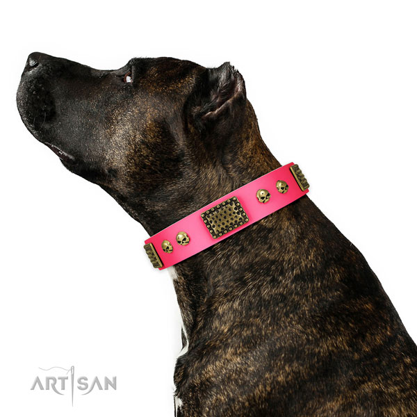 Strong traditional buckle on natural leather dog collar for handy use