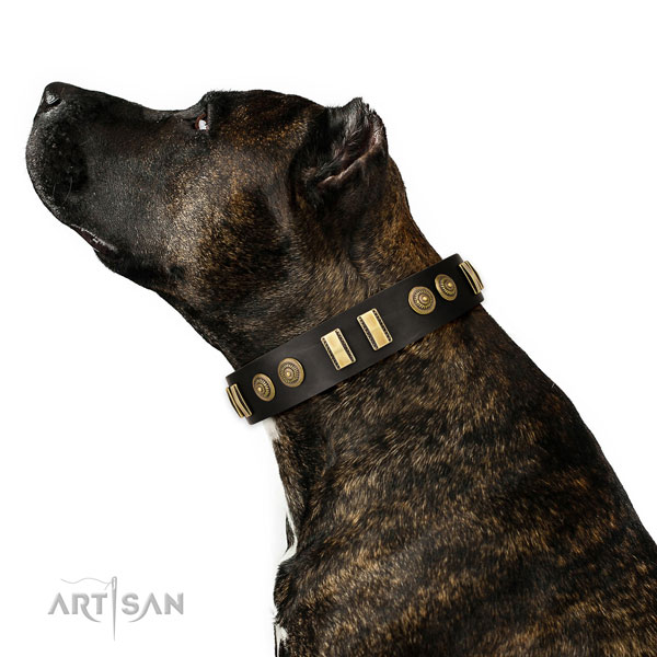 Corrosion proof buckle on full grain leather dog collar for easy wearing