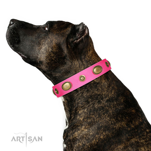 Easy wearing dog collar of leather with inimitable decorations