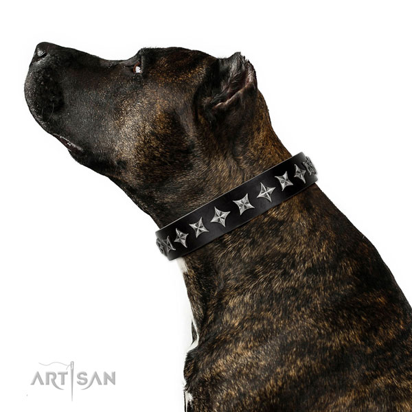 Daily walking decorated dog collar of durable genuine leather