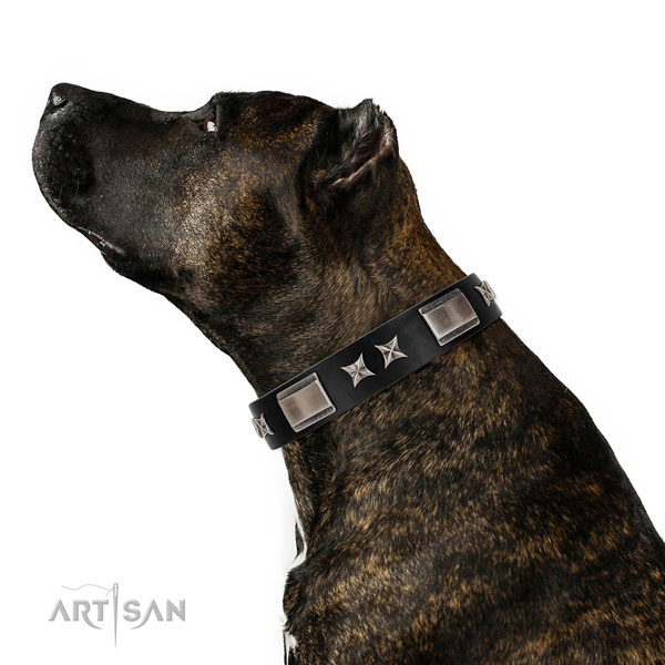 Daily use reliable full grain genuine leather dog collar with decorations