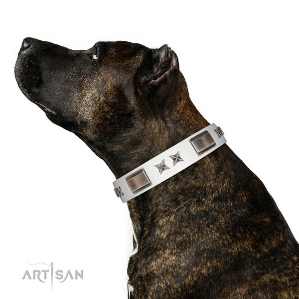 Best quality collar of full grain natural leather for your impressive pet