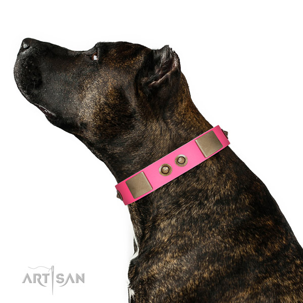 Handy use dog collar of genuine leather with fashionable decorations