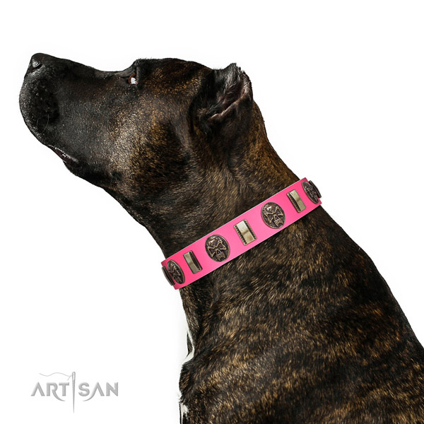 Rust resistant fittings on full grain genuine leather dog collar for everyday walking