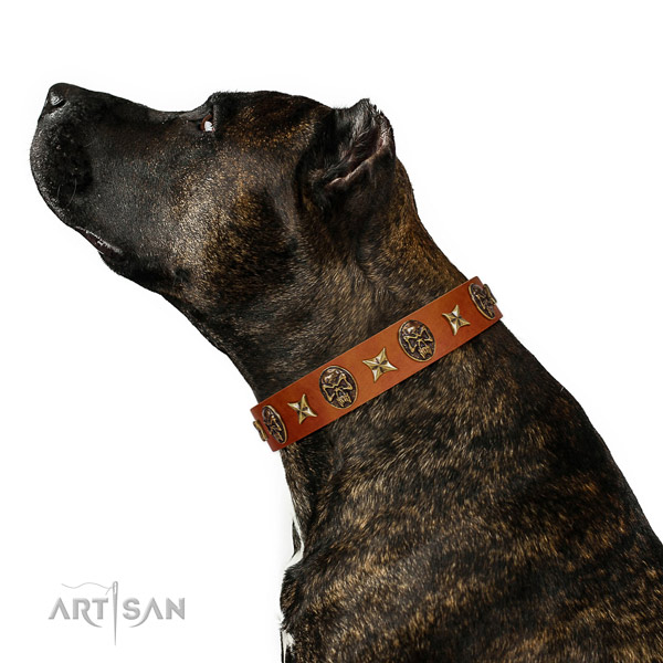 Convenient full grain natural leather dog collar with adornments