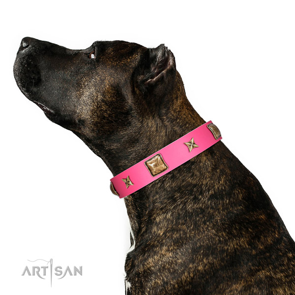 Full grain genuine leather dog collar of top rate material with designer embellishments