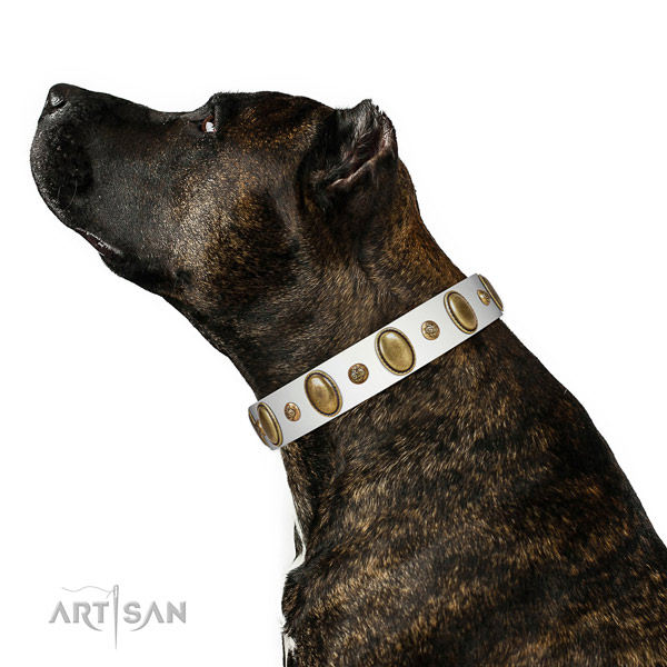 Comfy wearing reliable natural genuine leather dog collar with studs