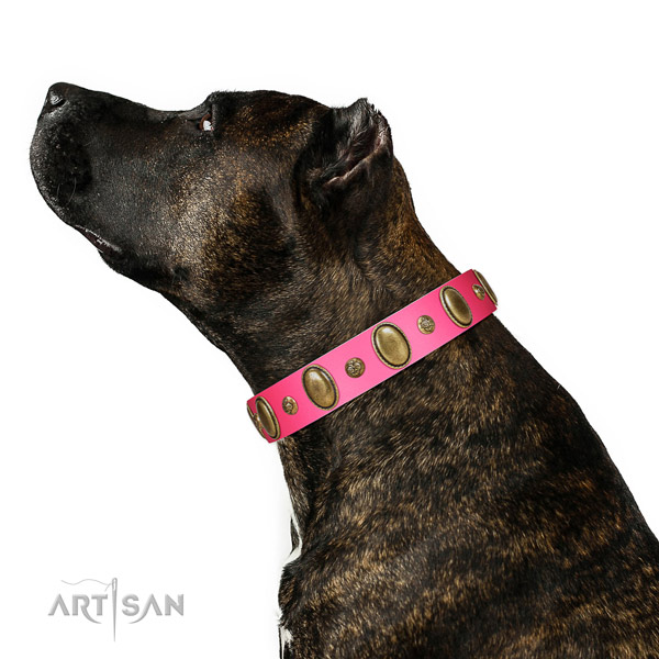 Walking soft genuine leather dog collar with adornments