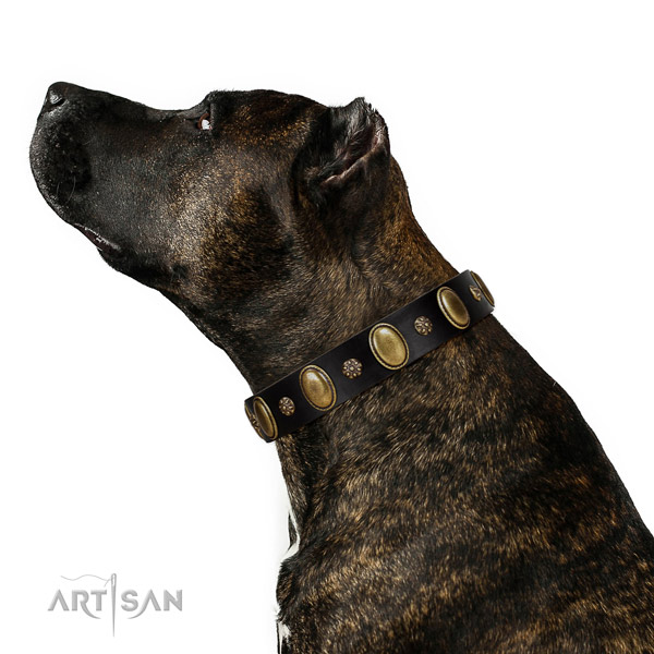 Comfortable wearing soft to touch full grain natural leather dog collar with adornments