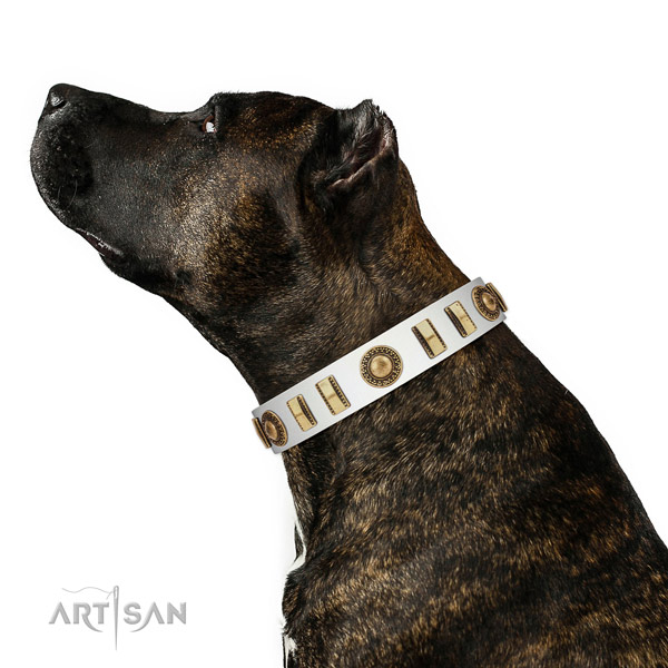 Awesome full grain natural leather dog collar with strong D-ring