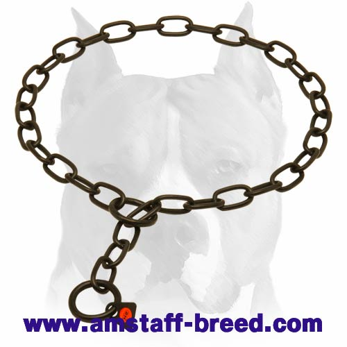 Amstaff Rust-proof Chain Collar
