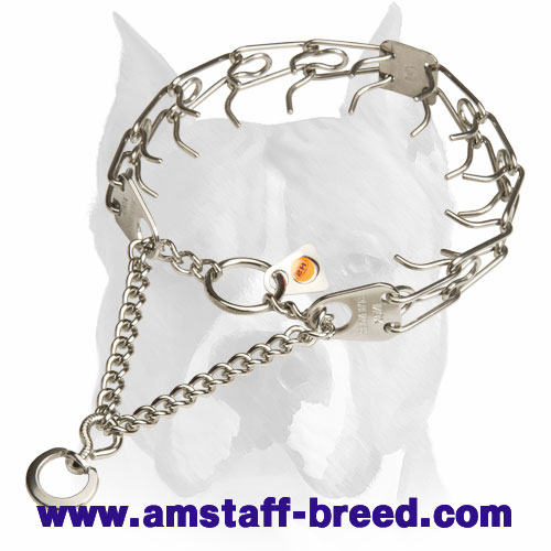 Amstaff Durable Pinch Collar