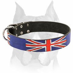Painted leather dog collar for Amstaff breed