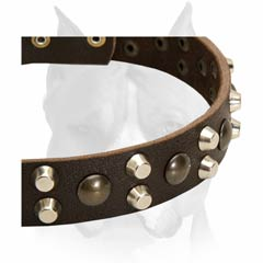 Fashionable leather comfortable dog collar for Amstaffs