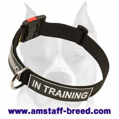 Amstaff strong and durable nylon dog collar with quick-release buckle