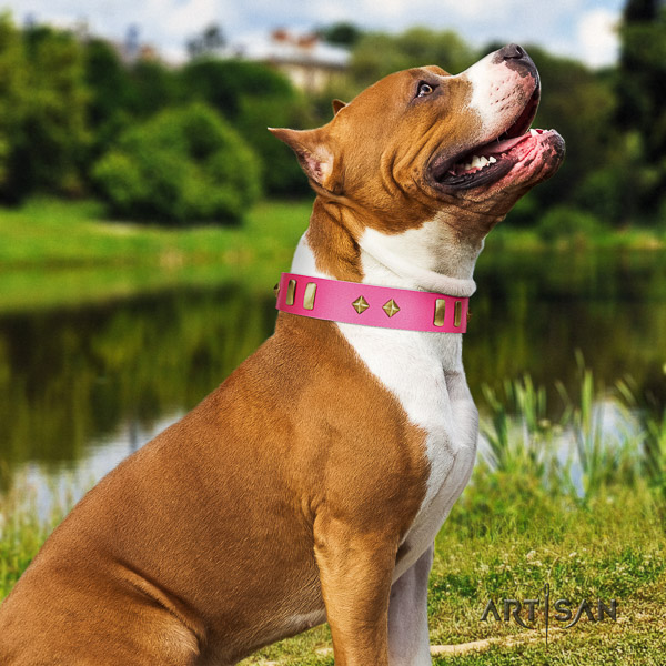 Amstaff decorated natural genuine leather dog collar for handy use